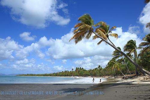 Pour découvrir l'île de Tahiti autrement